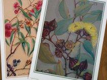 dorothy prints