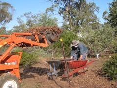 Heavy duty mulching of the garden between the cottages