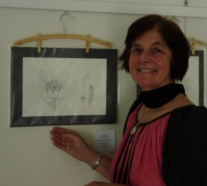 nita c lester with botanical drawing of a waratah